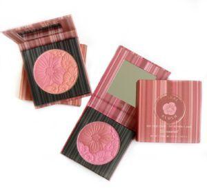 makeup school la bh cosmetics blush